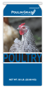 PoultryGeneric-Thumb